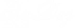 Логотип компании ЭльДиз